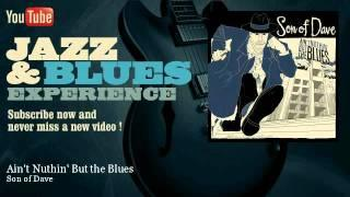 Son of Dave - Ain't Nuthin' But the Blues - JazzAndBluesExperience