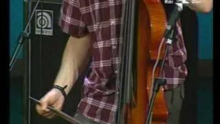 Marc Ribot Mystery Trio 4 / 6
