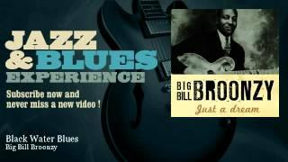 Big Bill Broonzy - Black Water Blues