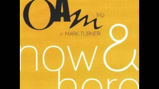 Aaron Goldberg&Mark Turner - Second Chance