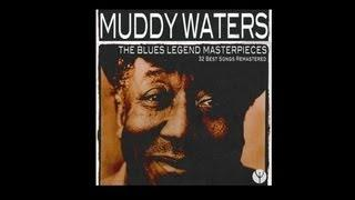 Muddy Waters - I Feel So Good (Rare Live Take)