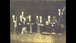 Friar's Society Orchestra (New Orleans Rhythm Kings) - Discontented Blues - Gennett 4967 (HD)